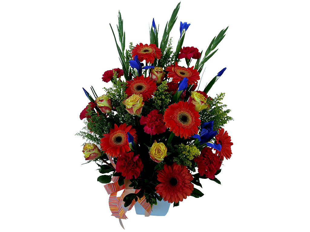 Funeral Directors Brisbane Pot Of Spring With Roses Traditional